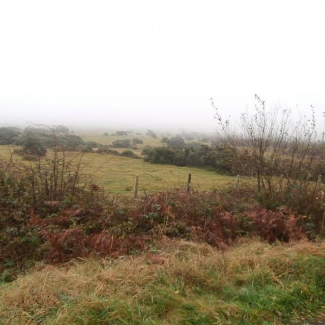 Nebel, Matsch und Cycling Adventures – Der Dartmoor National Park