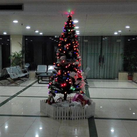 Beleuchteter Weihnachtsbaum in chinesischem Wohnheim