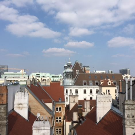 Blick auf die Dächer in Wien