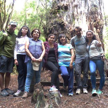 Reisegruppe im valdivianischen Regenwald