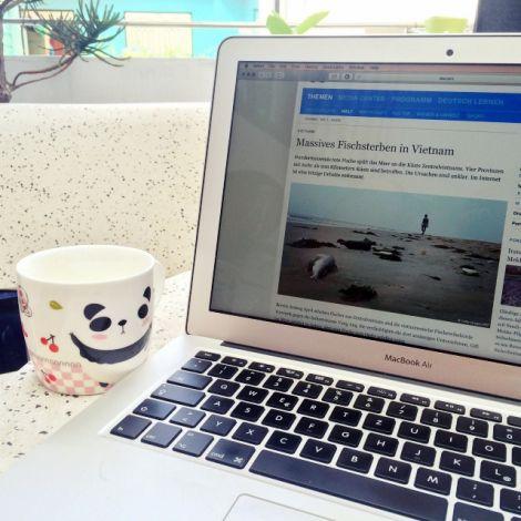 Laptop zeigt den Artikel über massives Fischsterben