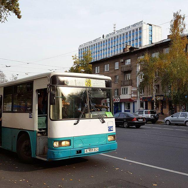 Wo ein Bus ist, ist auch eine Bushaltestelle 🤗😃🚌