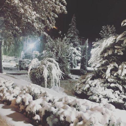 Alina, Iran
