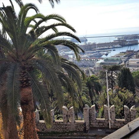 Palmen in Italien