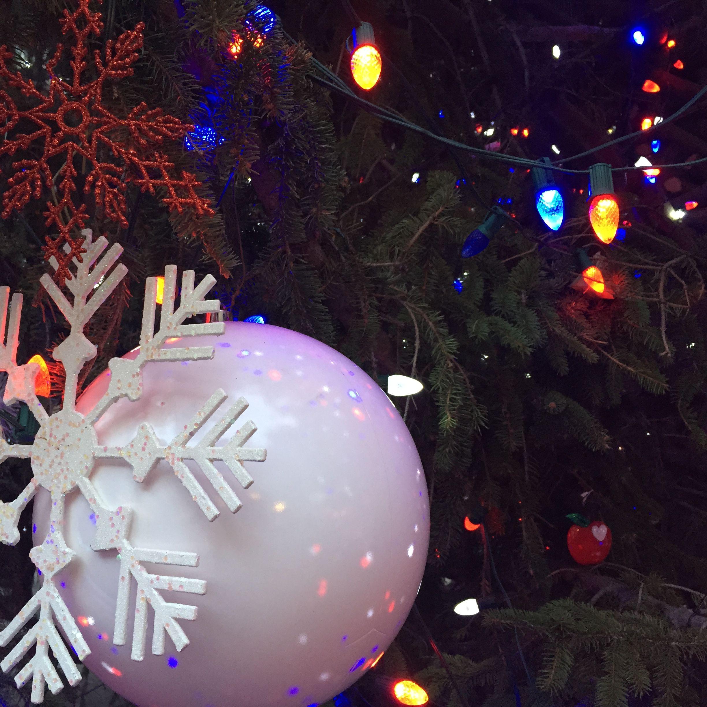 A New York City ChristmasStudium | studieren weltweit