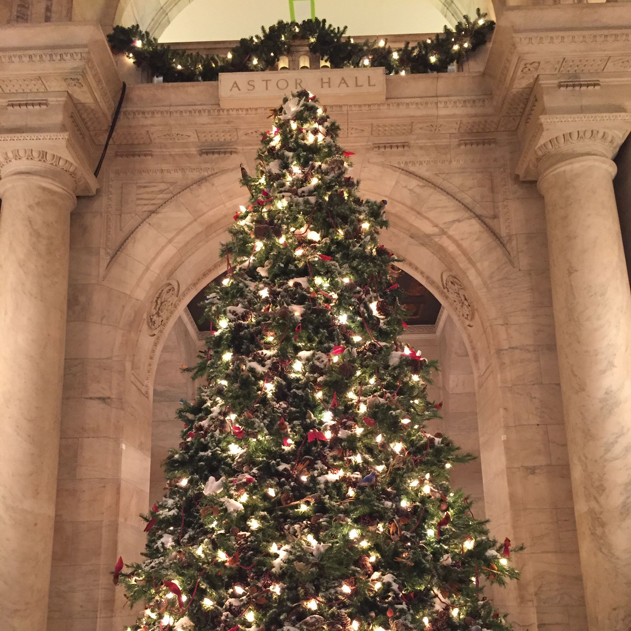A New York City ChristmasStudium | studieren weltweit