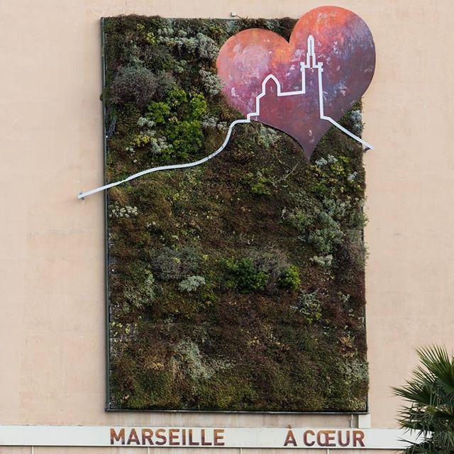 Beet mit Herzform und der Unterschrift Marseille a Coeur