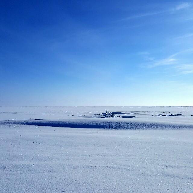 Schnee bis zum Horizont.