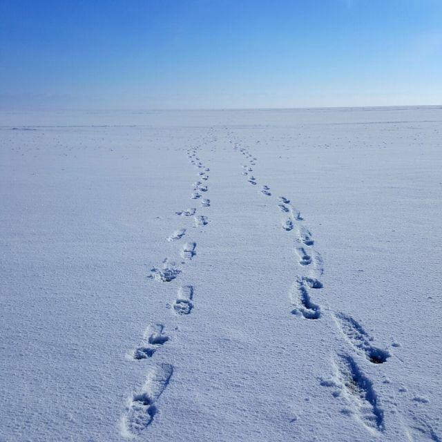 Fußstapfen auf dem Baikalsee.