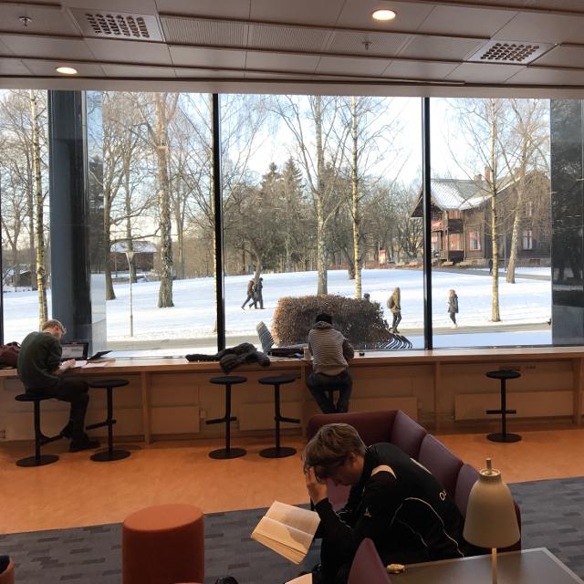In einer Bibliothek arbeitende Studenten vor einer großen Glassfront