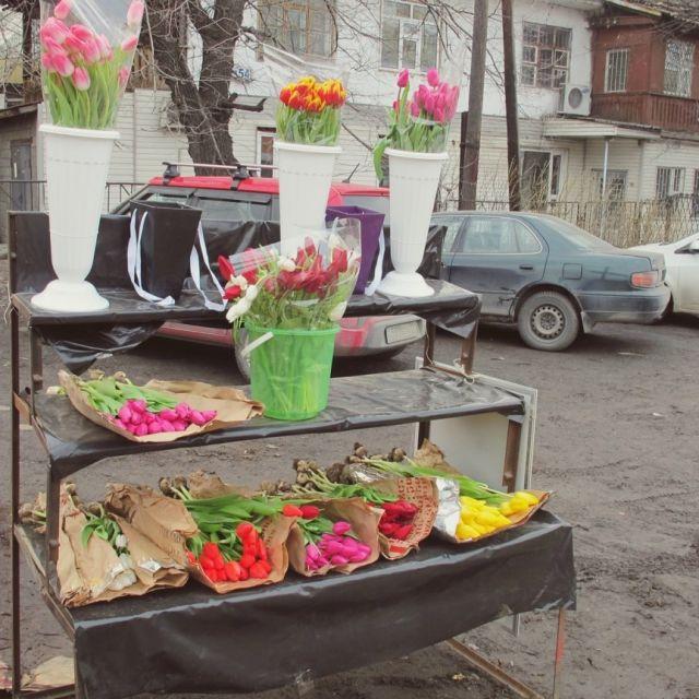 Blumenstand am Straßenrand in Almaty an dem Tulpen in rot, pink, und gelb angeboten werden.