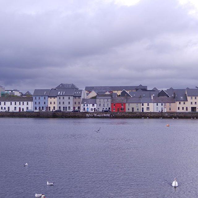 niedrige, bunte Reihenhäuser auf der anderen Uferseite von Galway Bay
