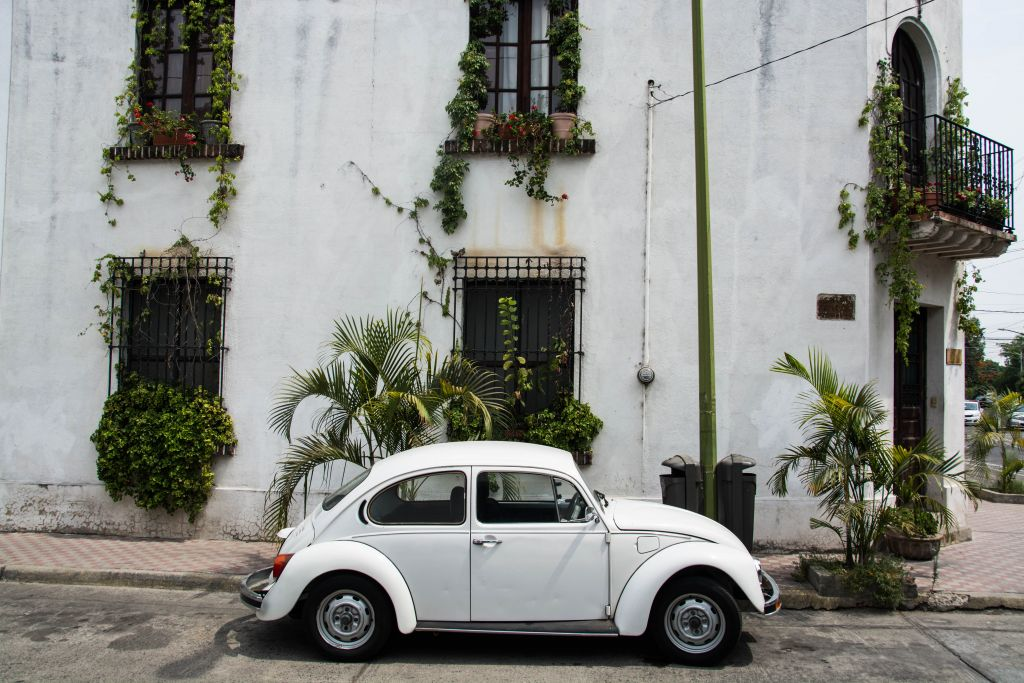 Alter VW-Käfer mit schön bepflanztem Gebäude