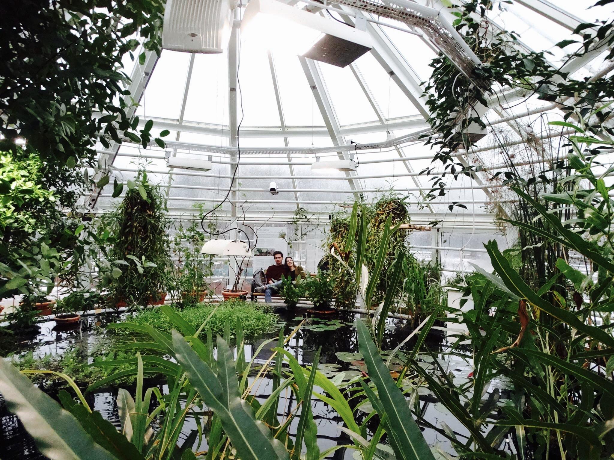 Gewächshaus mit Pflanzen und Teich