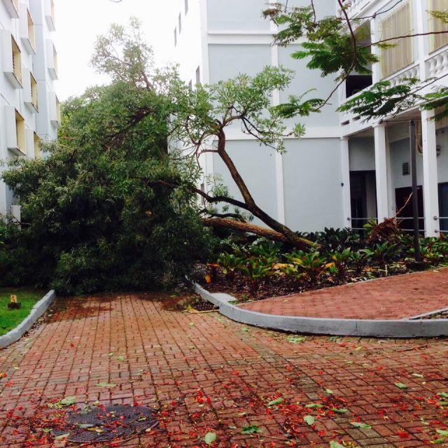 nach dem Hurrikan Irma