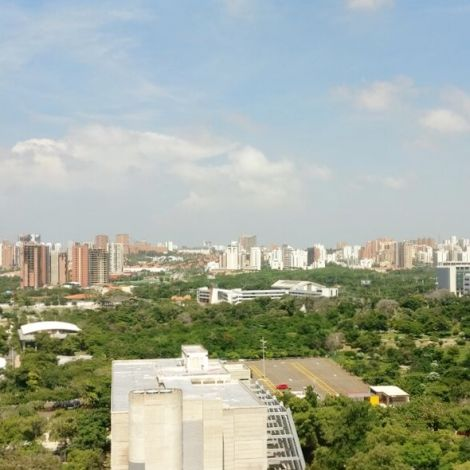 Aussicht aus dem Ingenieursgebäude auf die Skyline und Baumkronen