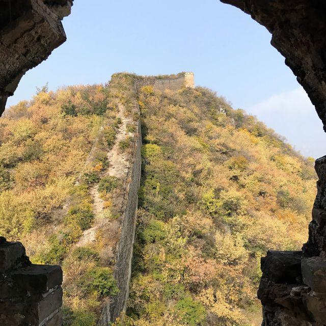 Blick aus einem Wachturm auf die verwucherte Mauer