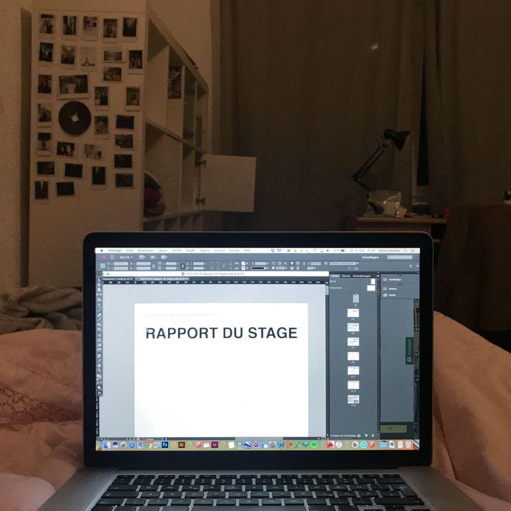 In dem Rapport du Stage habe ich einige Seiten über mein Praktikum berichtet. Dazu kamen noch sehr viel Formulare, die ich dazu abgeben musste.