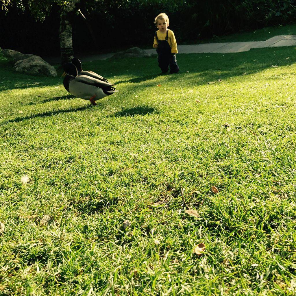 Lissabon mit Kleinkind: 5 entspannende Orte für lau