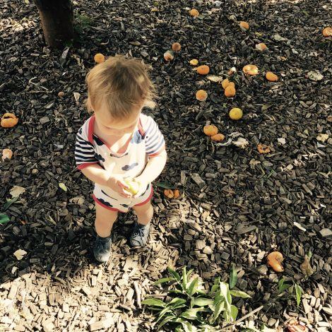 Kind mit Mandarine