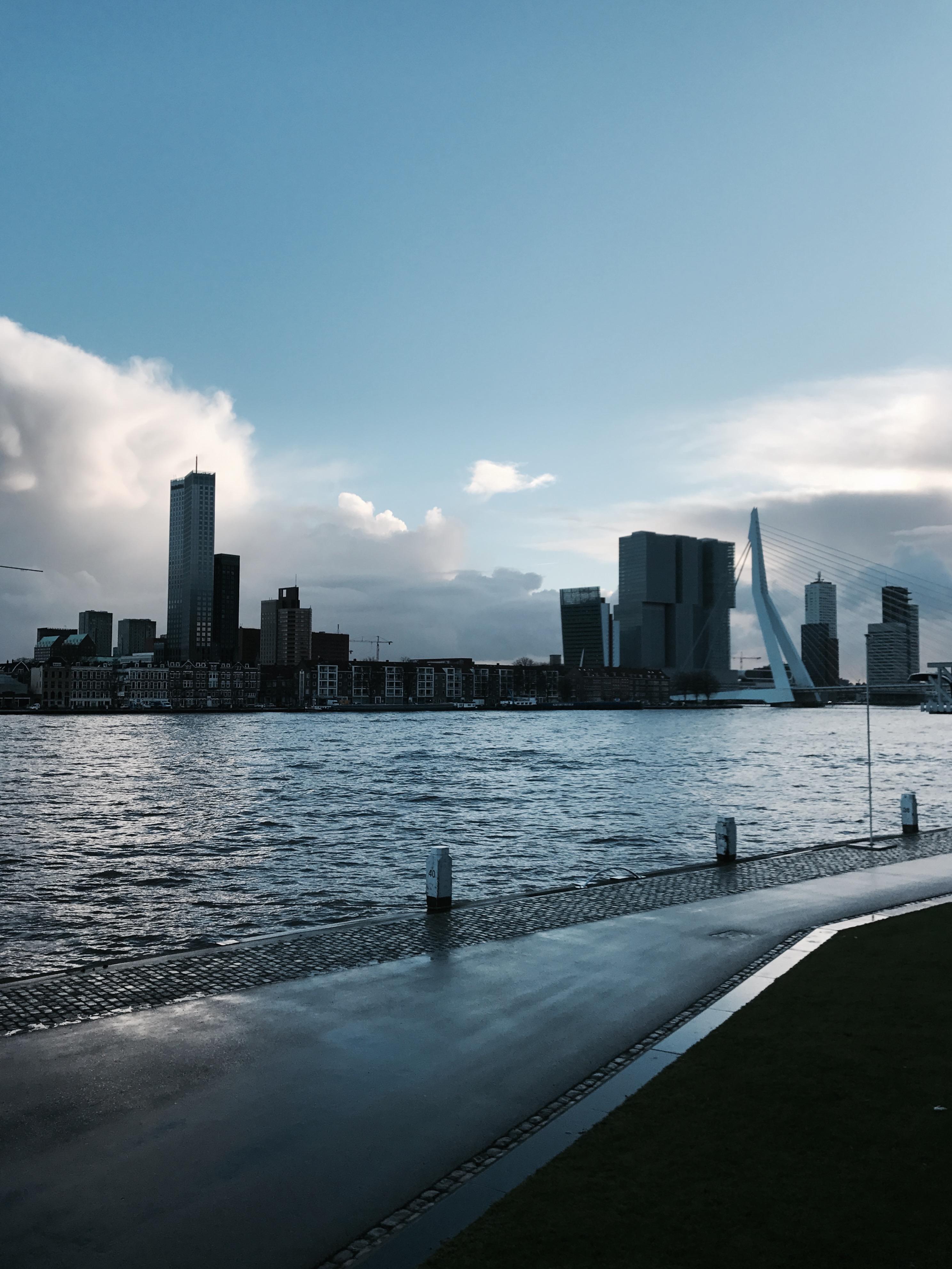 Das Ufer in Rotterdam