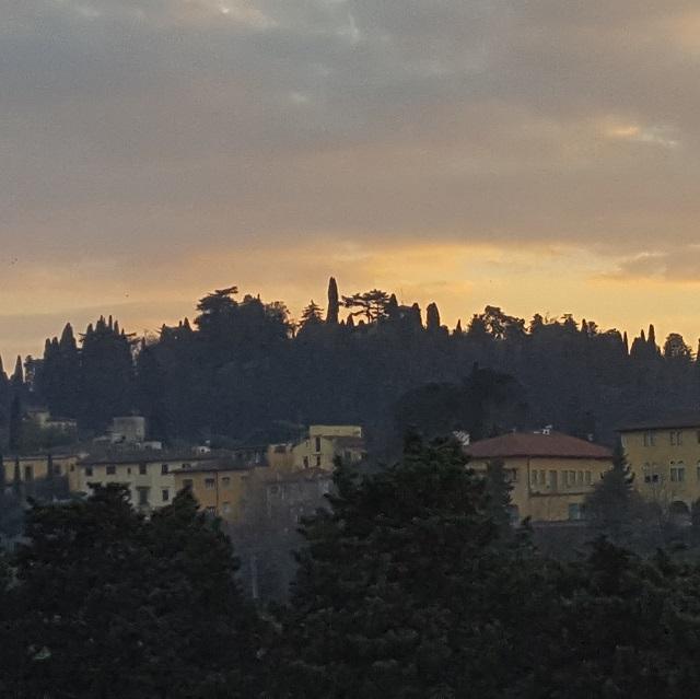 Blick auf ein höhergelegenes Stadtviertel von Florenz mit vielen Bäumen.