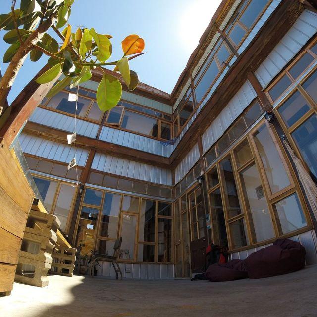 Terasse mit Pflanzen und vielen Fenstern