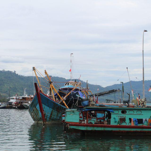 Das Bild zeigt zwei bunte Schiffe, die an einem Kai ankern