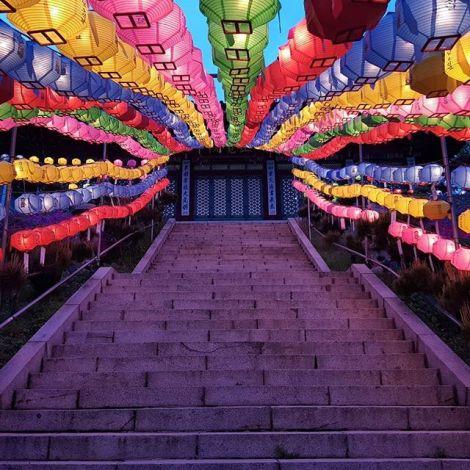 Dank Buddhas Geburtstag hingen unzählige Laternen zwei Monate lang überall an…
