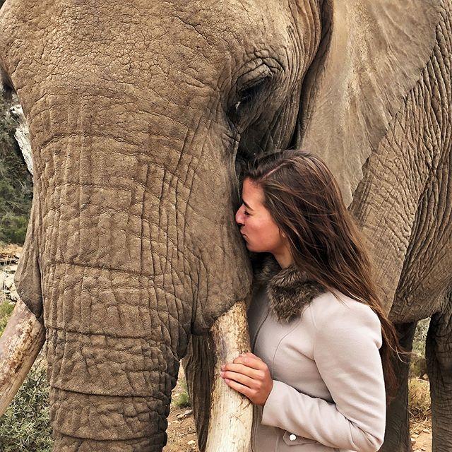 Während ich in Südafrika mit Elefanten kuschel, badet @_chaanty in Indonesien…
