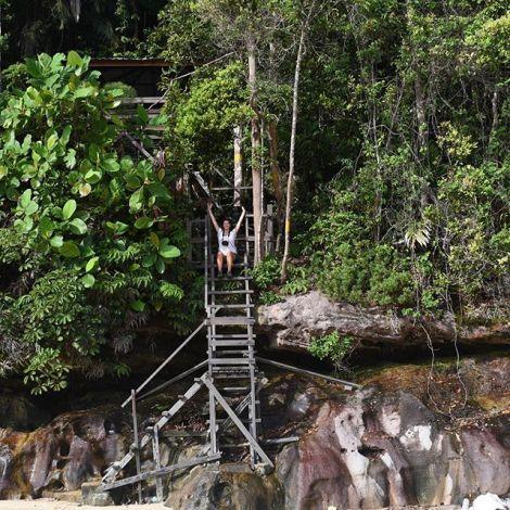 Borneos Regenwald ist ca. 140 Millionen Jahre alt und damit der Älteste…