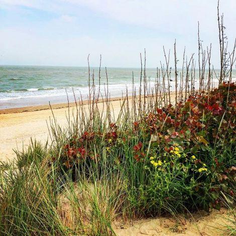 Der perfekte Sonntag: Raus aus der Stadt und ab ans Meer 🌊⚓️…