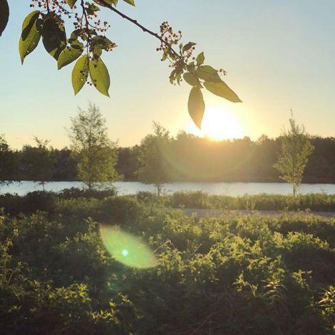 Hier in #lappland geht die Sonne im Sommer mehrere Wochen lang nicht unter.…