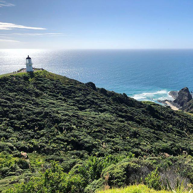 Ausblick aufs Meer mit Leuchtturm in Neuseeland.