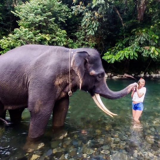 Insel-Hopping in Indonesien: 4 Inseln, die man gesehen haben muss