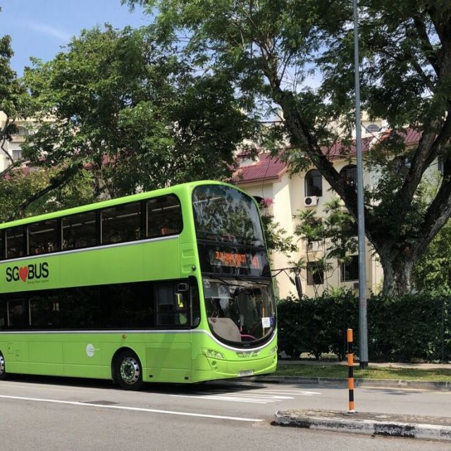 Das Bild zeigt einen gruenen Doppeldeckerbus vor Baeumen.