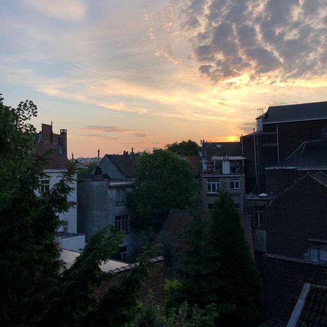 Sicht aus meinem Wohnheimzimmer: Bäume und Gebäude