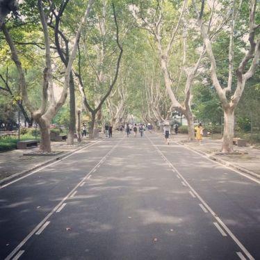 Auf dem Siping Road Campus der Tongji-Universität in Shanghai