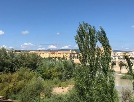 Have a nice Sunday! ☀️ Bevor die Uni hier in Córdoba nun so richtig…