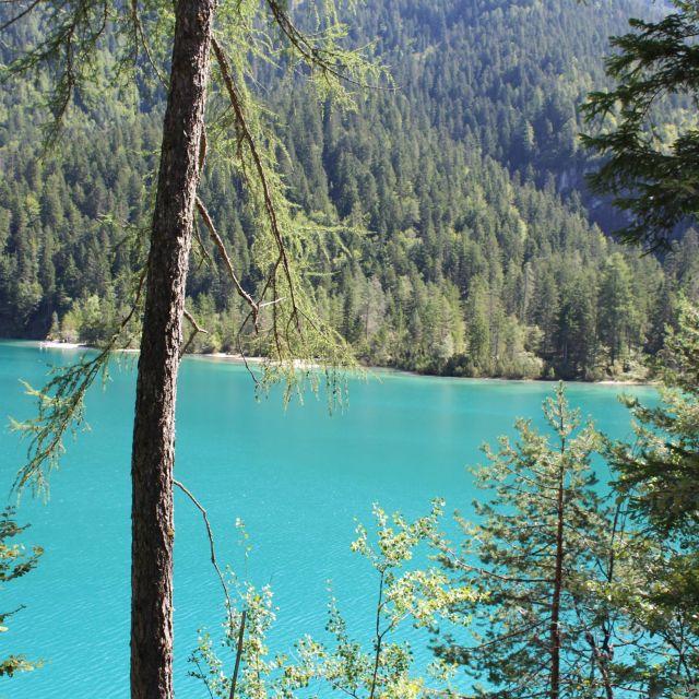 blauer See und Bäume