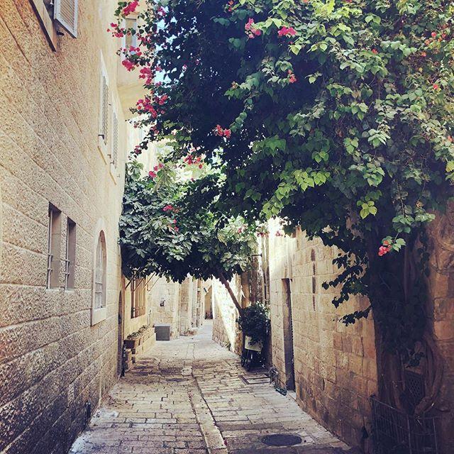 #FunFact Der #Meleke (#Kalkstein) genannte Jerusalem Stein wurde schon vor…