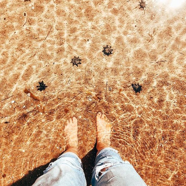 -not all stars belong to the sky- 🐚⭐️🌊…