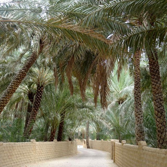 Weg in der Al Ain Oase