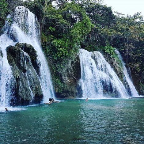 So sieht also eine Ökologie Exkursion in Mexiko aus 😍 Regenwald,…