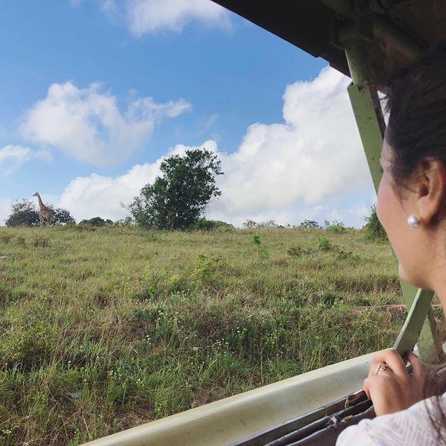 Me und die einzige Giraffe im Shimba Hills National Park in der Nähe von…
