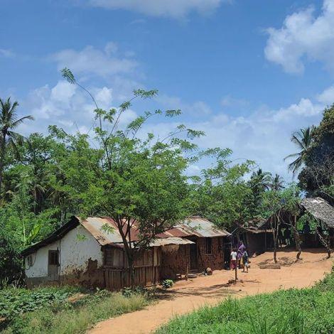 Ich verlasse Tansania für ein paar Tage und mache mich auf den Weg nach Kenia.…