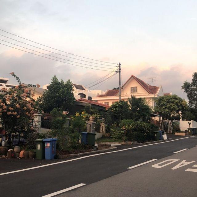 Straße mit Häusern und Pflanzen