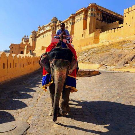 #jaipur ist nicht nur die Hauptstadt von #rajasthan - die Stadt, die auch als…