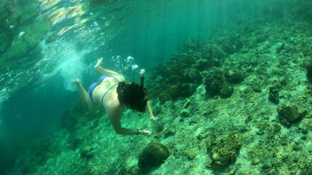 A dip into another world 🐠 #underwaterworld #snorkeling #diving…