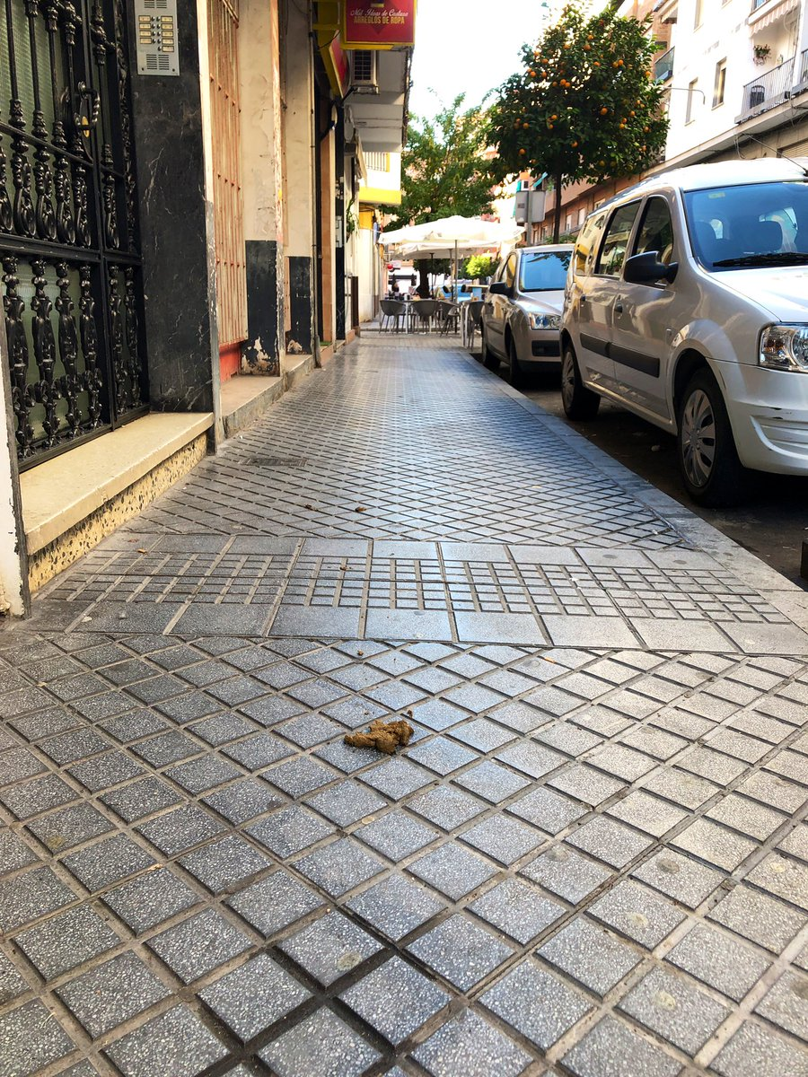 Mir ist das nicht sch*** egal. In Córdoba gibt es viele Hunde und…
